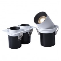 Recessed Stretchable Double heads Spotlight Adjustable Spotlight for Shop Lighting